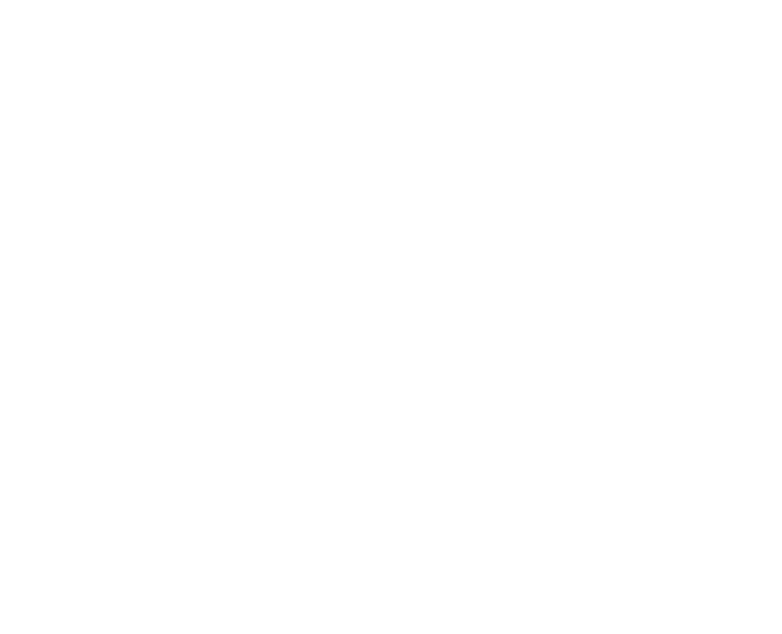 Logo_AoE_ws.png